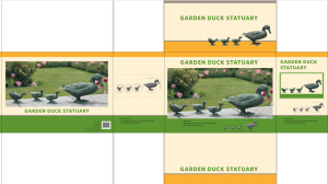Duck Set_FPO